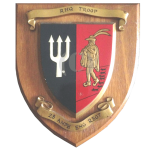 28 Amph Engr Regt – RHQ Troop – Wall Plaque