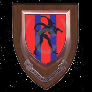 29-Field-Squadron