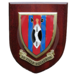 30 Field Squadron – Wall Plaque