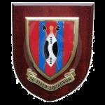 30 Field Squadron – Wall Plaque
