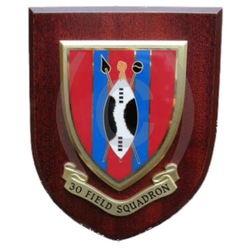 30-Field-Squadron