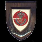 35-Engineer-Regiment