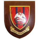 5 Field Squadron – Wall Plaque