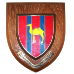 65 Corps Support Squadron RE – Wall Plaque