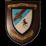 522 Specialist Team Royal Engineers